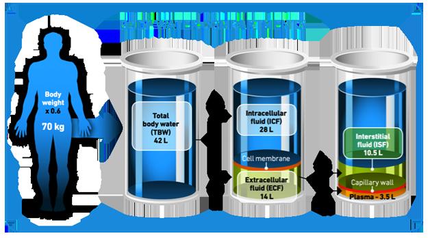 bodywater1